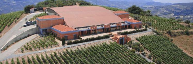 http://www.vinoteca.gr/media/attributesplash/article_1.jpeg